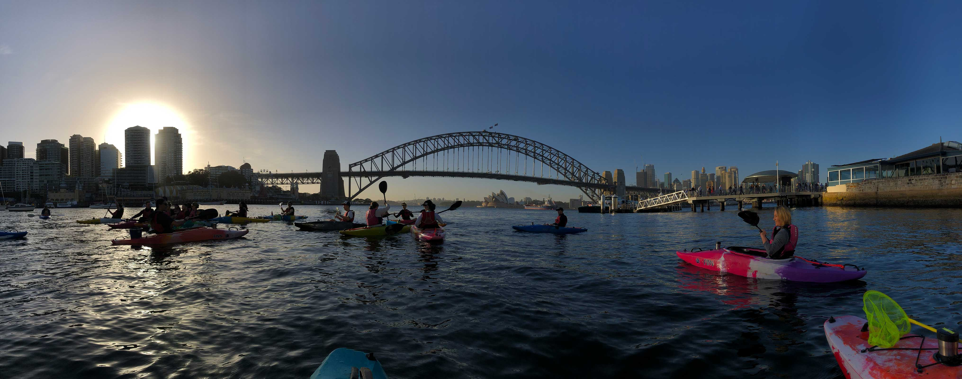 Pledge 2: Cleaning up Sydney Harbour by kayak